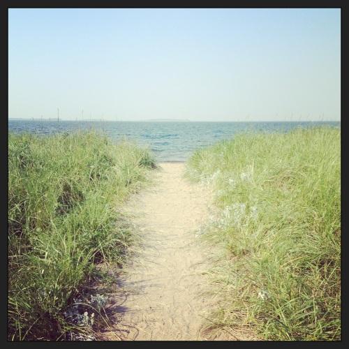 Bachmann's Beach
